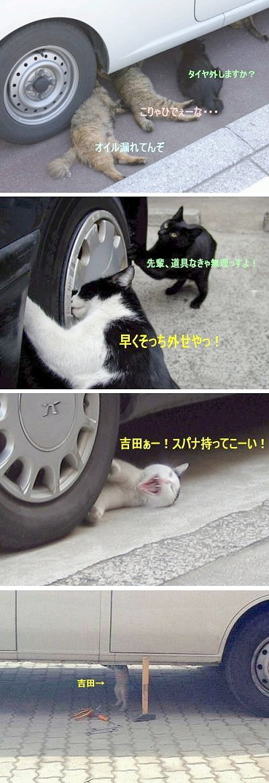 猫バス仕様ミニカトッポ&吉田ぁー!スパナもってこい!の画像