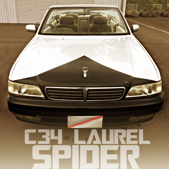 C34 LAUREL SPIDER