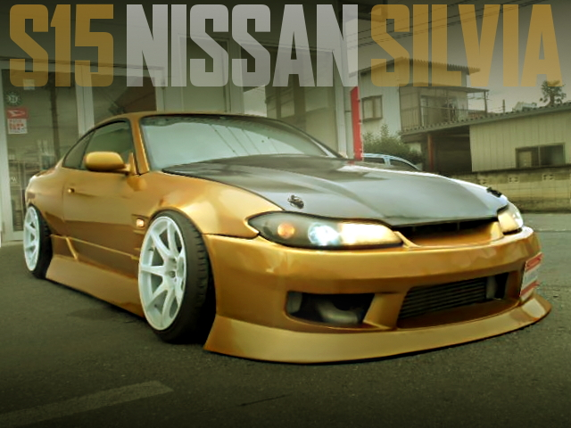 S15 SILVIA DRIFT SPEC