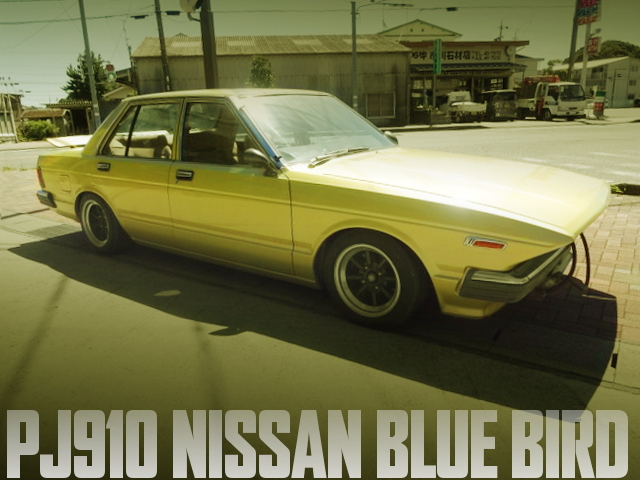LONGNOSE PJ910 BLUEBIRD 4-DOOR