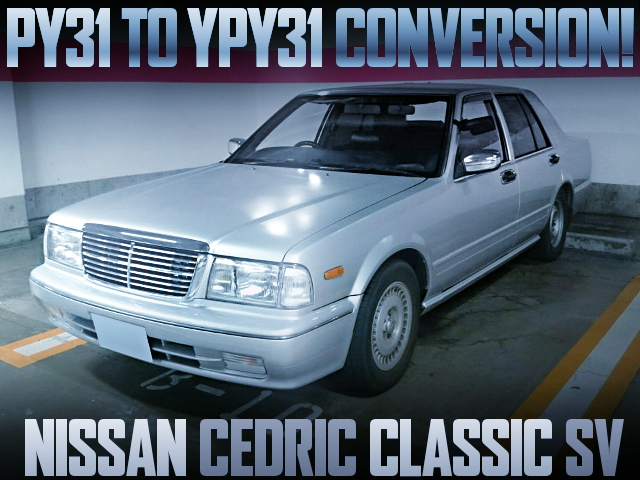 PY31 TO YPY31 CONVERSION CEDRIC