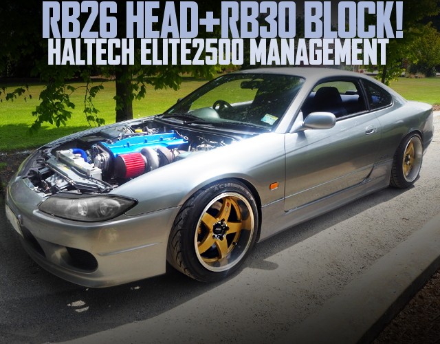RB30 ENGINE S15 SILVIA