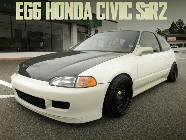EG6 CIVIC SiR CAMBER STANCE
