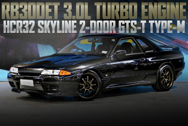 RB30DET 3000cc TURBO HCR32 SKYLINE