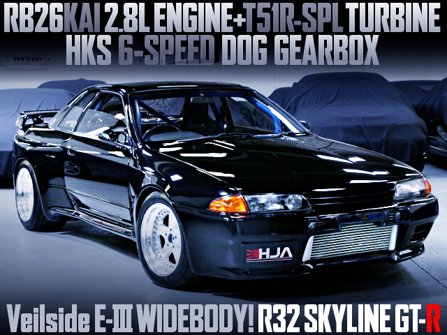 VEILSIDE E3 WIDEBODY R32 SKYLINE GT-R