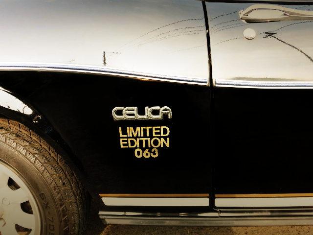 EXTERIOR BLACK CELICA DECAL