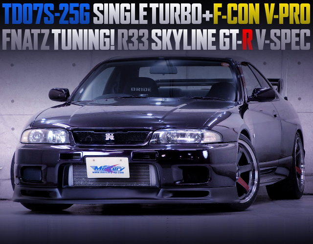 FNATZ TUNING R33 SKYLINE GT-R MIDNIGHT PURPLE