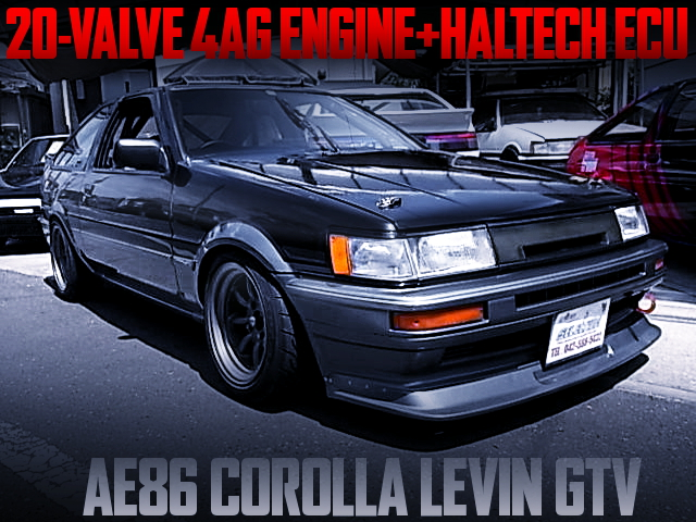 20V 4AG AND HALTECH ECU OF AE86 LEVIN GTV