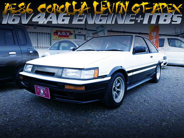 16V 4AG with ITBs INTO A AE86 LEVIN GT-APEX TO PANDA COLOR