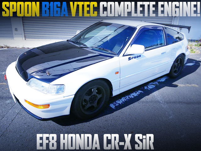 SPOON B16A VTEC COMPLETE ENGINE INTO EF8 CR-X SiR