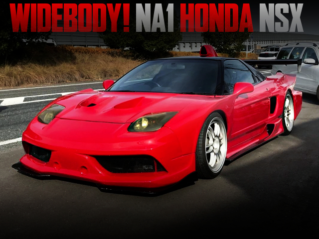 WIDEBODY AND SPOON ECU WITH NA1 NSX TO RED