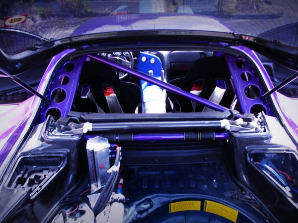REAR ROLL CAGE