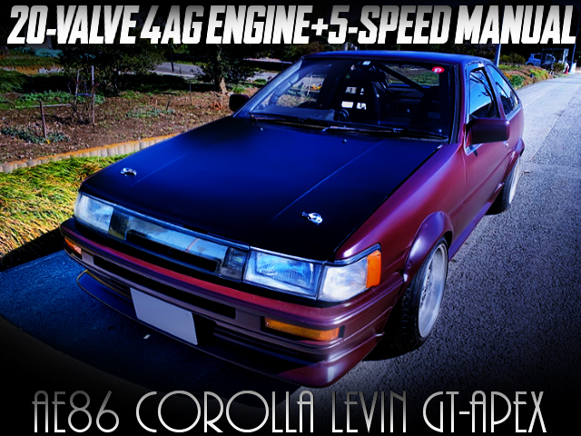20V 4AG SWAPPED AE86 LEVIN GT APEX