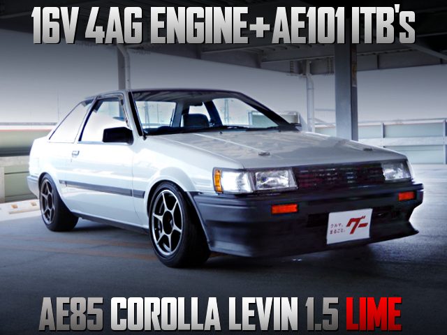 16V 4AG with ITBs INTO AE85 LEVIN LIME