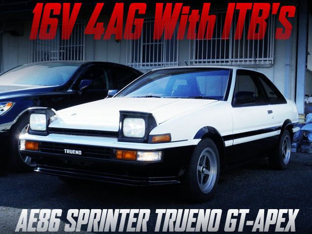 16V 4AG with ITB'S INTO AE86 TRUENO GT-APEX PANDA COLOR.