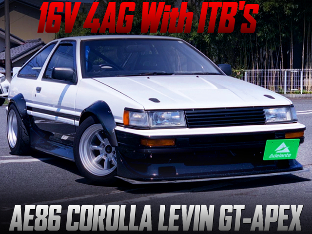 16V 4AG WITH ITB's INTO AE86 LEVIN GT-APEX WIDEBODY.