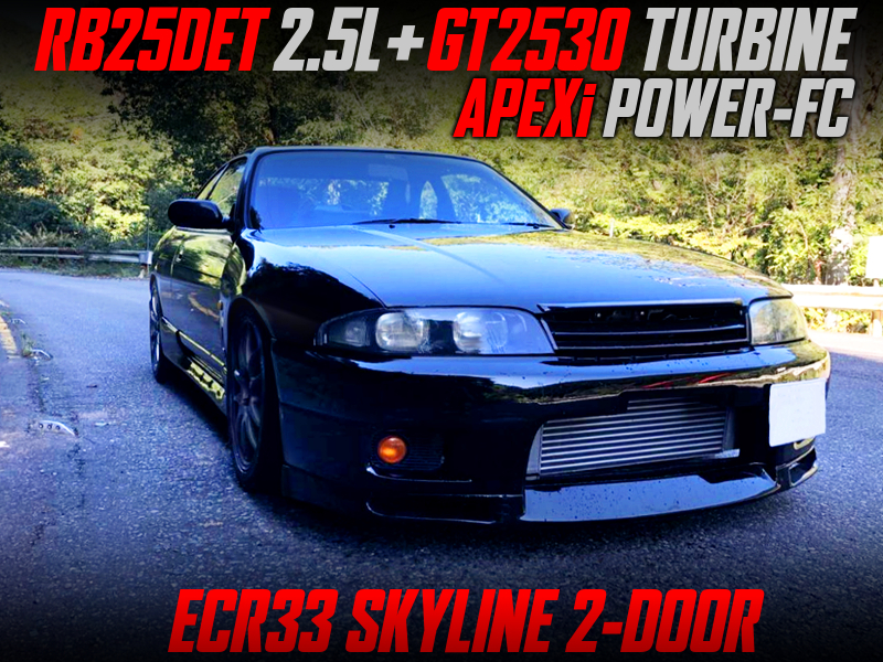 GT2530 TURBOCHARGED ECR33 SKYLINE 2-DOOR.