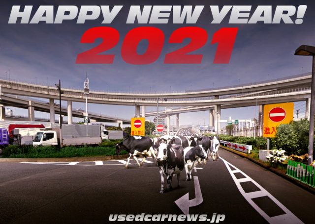 happy New Year 2021 to cow.
