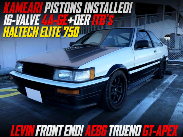 16V 4AG with ITBs And HALTECH ELITE 750 INTO AE86 TRUENO to LEVIN FRONT END CONVERSION.
