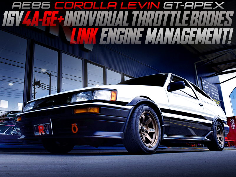 16V 4AGE with ITBs and LINK ECU MODIFIED AE86 LEVIN GT-APEX.