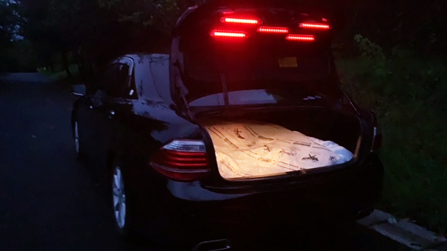 LED TRUNK FOOD of UNMARKED POLICA CAR.